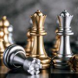 Državno spletno prvenstvo v šahu